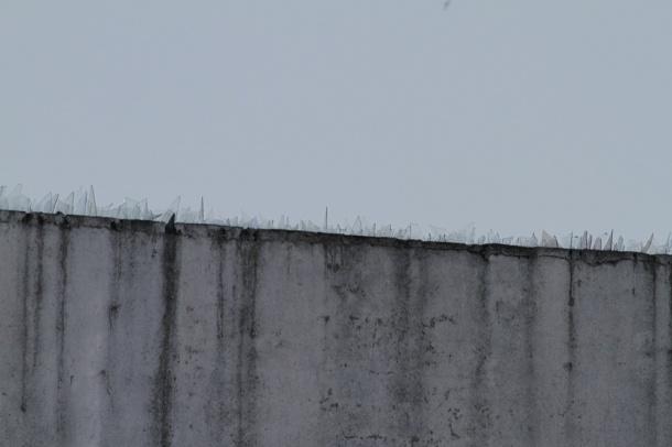 wall_web