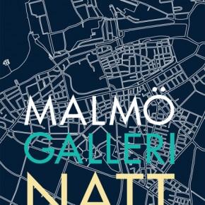 Malmö Gallerinatt 2012
