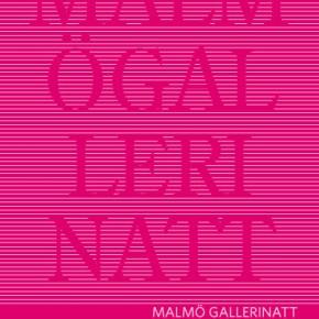 Malmö Gallerinatt 2013