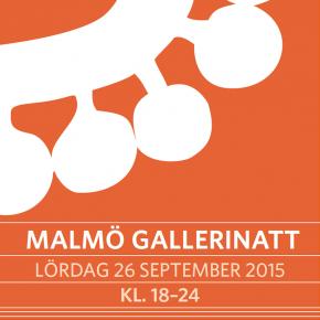 Malmö Gallerinatt 2015